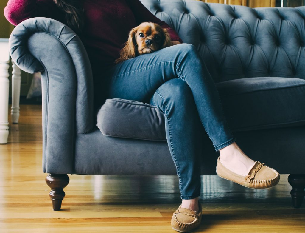 woman sitting on couch with puppy